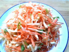 Salad with cabbage onion carrots and celery