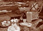 picnic_c