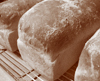 Short-time-basic-white-bread_c