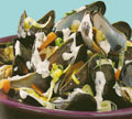 Steamed-mussels-with-herb-s