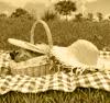 picnic ava